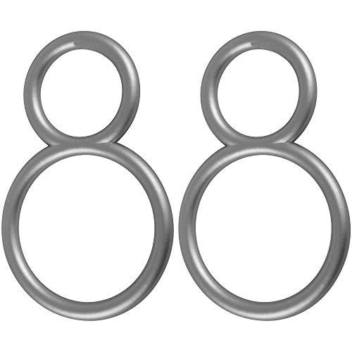 Bestlivings Dekoringe 2er Pack für Gardinen Querbehang in Silber matt, Drapieringe für Vorhänge, Dekoschals - Typ B