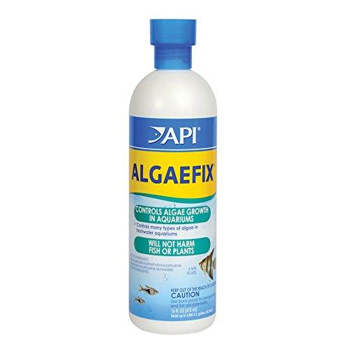 API AlgaeFix 16 oz Bottle Freshwater Aquariums Clean Clear Revolutionary Product (Pharmaceuticals Aquarium Api)