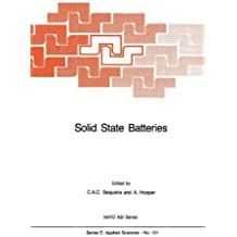 Solid State Batteries (Nato Science Series E:, Band 101)