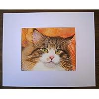 Kater - handgemaltes Originalbild, Hauskatze, Katzenbild