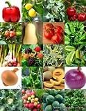 Légumes et fruits Mix Heirloom Jardin Bio non-OGM des semences 150 graines non traitées