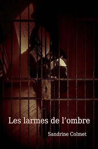 Les Larmes De L'ombre por Sandrine Colmet epub