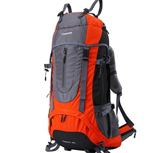 ROBAG Outdoor escursionismo zaino viaggio spalla multifunzionale impermeabile 65L uomini e donne inviato parapioggia , orange 65 liters orange 65 liters
