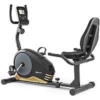HS HOP-SPORT Vélo d'Appartement Semi-allongé HS-040L Root (Doré) | Résistance réglable sur 8 Niveaux | Max 120 kg