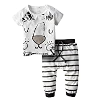 aaf7177be BIG ELEPHANT Baby Boy's 2 Pieces Short Sleeve T-Shirt Pant Clothing Set  Grey H79