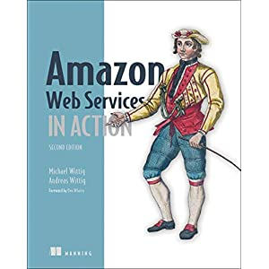 41IofcjaxEL. SS300  - Amazon Web Services in Action