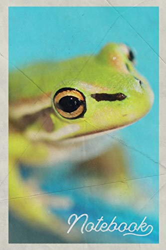 Notebook: Renacuajo Stylish Composition Book Journal Diary for Men, Women, Teen & Kids Vintage Retro Design for notes on american green tree frog care -