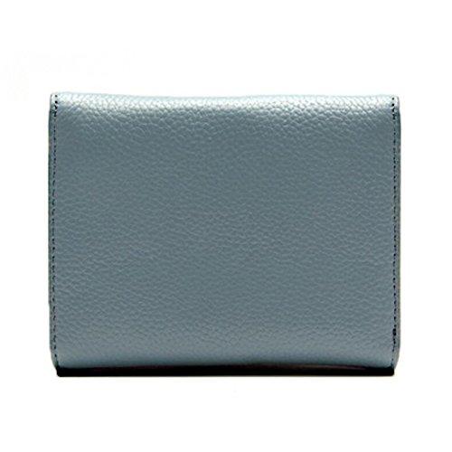 Borsa delle donne, Piccola moneta Borsa di pelle Portafoglio per le donne, Porta carte di credito Cambia portafoglio del sacchetto (blu) viola