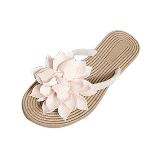 KOLY Pantofole Donna Sandali Floreali Donna Calzature da spiaggia morbide e morbide per il tempo libero Beige