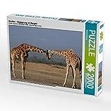 CALVENDO Puzzle Giraffen Begegnung am Morgen 2000 Teile Lege-Größe 90 x 67 cm Foto-Puzzle Bild von Michael Herzog