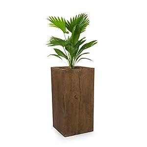 blumfeldt Timberflor • Pflanztopf • Pflanzenkübel • Blumentopf • freie Standortwahl • Keine Wasserablaufbohrung • Fiberglas • standsicher • In-/Outdoor • Holz-Optik • 40 x 80 x 40 cm (BxHxT) • braun