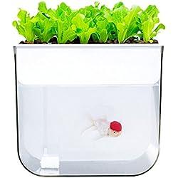 MUJING Intelligenter Fischtank, Hydroponisches System. Fischtanks mit Organischen Sprossen und Aquarium-Start-Kit-Kräuter. Tolle Weihnachts Kinder/Halloween-Geschenke