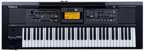 Roland E09IN Indian Edition Interactive Keyboard Arranger with Indian Sound Suite
