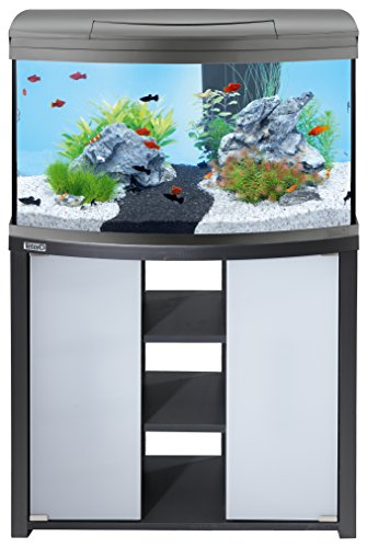 Tetra AquaArt Evolution Line LED Aquarium-Komplett-Set 100 Liter anthrazit - 5