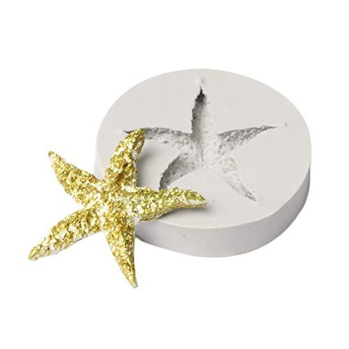 Sunnyday Conchas Marinas Serie Perlas Concha Estrellas