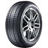Wanli MP 5420068633265–205/55/R1691H–C/C/72db–Winter pneumatici
