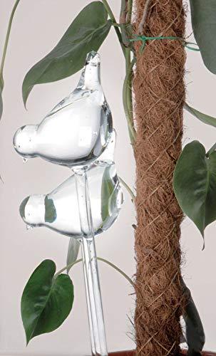 hibuy 2er Set Vogel Bewässerungskugel/Glas Wasserspender für Blumen & Pflanzen - 35 cm