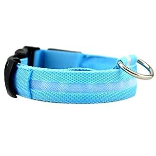 Kongnijiwa Home LED Pet Dog Collar Flashing Glow Dog Leash Neck Belt Collars Pet Fluorescent Cat Neck Belt Rope Cord, L