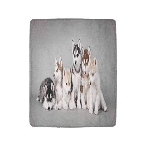 Mesllings Siberian Husky Puppies Fleecedecke für Bett Couch Stuhl Tagesbett 101,6 x 127 cm Husky Olive