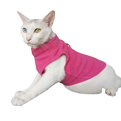 - Kleine Leopard Katze Kostüm