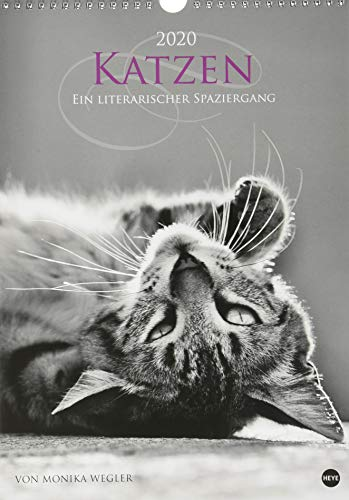 Katzen - lit. Spaziergang 2020 25x35,5cm -
