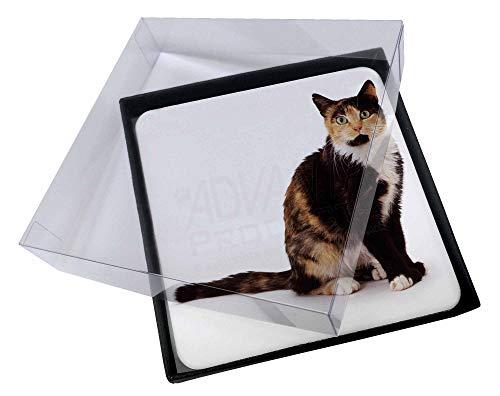Advanta - Coaster Set 4X Schildpatt-Katze Bild Setzer gesetzt