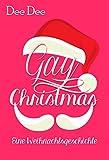 Gay Christmas: Eine Weihnachtsgeschichte