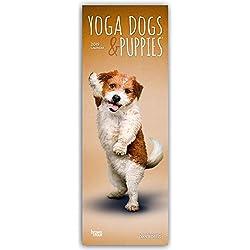 Yoga Dogs & Puppies 2019 Slimline Calendar