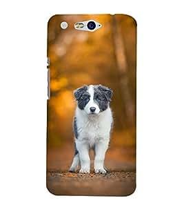 FUSON Puppy Love Dog 3D Hard Polycarbonate Designer Back Case Cover for InFocus M812