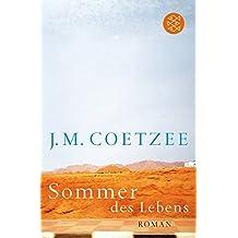 Sommer des Lebens (Fischer Taschenbücher Allgemeine Reihe)