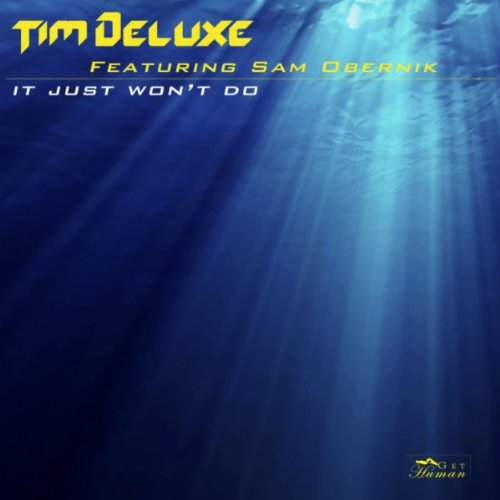 It Just Won't Do (feat. Sam Ob...
