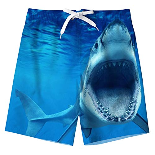 Boys Swimming Trunks 3D Blue Sha...
