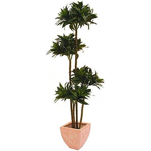 Albero del drago artificiale, in vaso, 475 foglie, verde, 4 tronchi, 140 cm - Dracaena artificiale / Pianta finta -