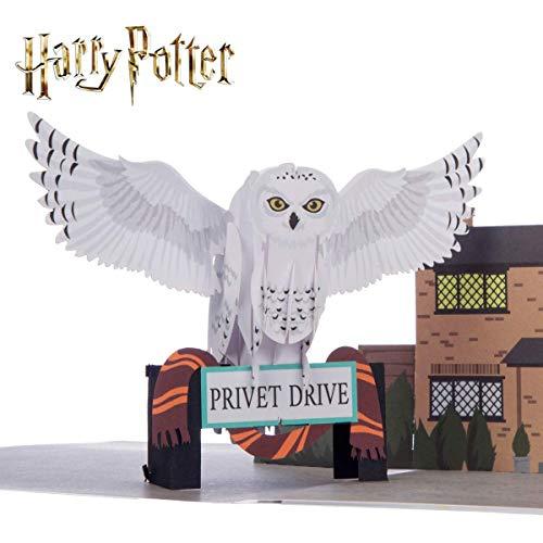 Tarjeta de Harry Potter - Hedwig Pop Up | Incluye un sobre Hogwarts y tarjeta de nota para su mensaje | Warner Brothers con licencia oficial
