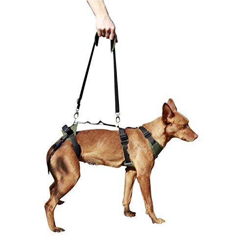Arnés canino Integral - XL