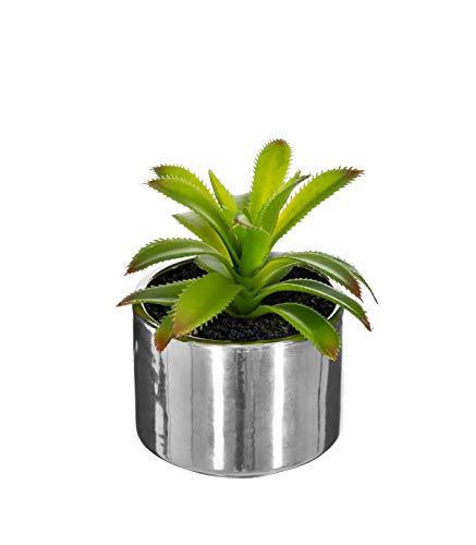 Atmosphera - Plante Verte Pot céramique h.15