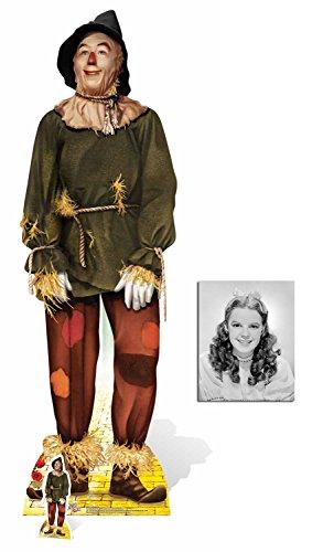 Fan Pack - die Vogelscheuche (Ray Bolger) von Der Zauberer von Oz (Wizard of Oz) Lebensgrosse und klein Pappfiguren / Stehplatzinhaber / Aufsteller - Enthält 8X10 (25X20Cm) starfoto
