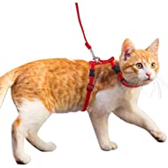 HOMIMP Adjustable Cat Harness and Lead Set Velvet and Nylon Leash for Kitty Kitten Walking Red
