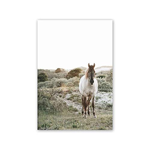 muzi928 Modern Animal Horse and Beautiful Landscape Canvas Painting Print Poster Picture Home Wall Art Decoration Can Be Customized50x70 cm No Frame