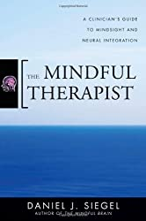 The Mindful Therapist - A Clinician's Guide to Mindsight and Neural Integration