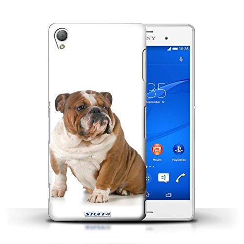 Kobalt® Imprimé Etui / Coque pour Sony Xperia Z3 / Bull Terrier conception / Série Chiens Bouledogue