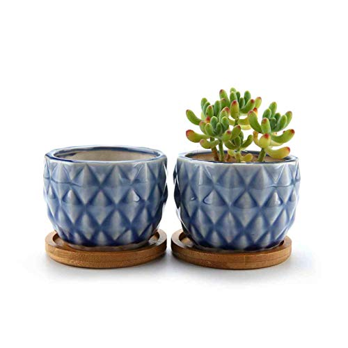 ComSaf Vaso per Pianta Grassa Vaso di Piante con Vassoio di bambù Blu 8.3CM Ceramica Forma di Ananas Set di 2, Fioriere di Cactus Contenitori Vasi di Fiori Decorativo del Desktop Davanzale Bonsai