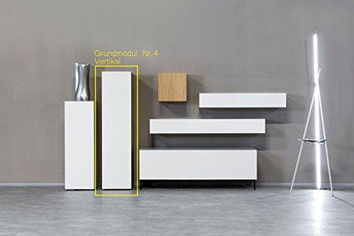 KITOON Grundmodul Nr. 4 (B 152 H 38 T 35 oder 48 cm) – Vertikal, Tür links, Tiefe 48 cm, Buche geölt (Echtholzfurnier) - 2