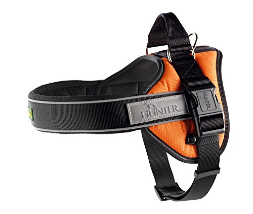 Hunter Geschirr Neopren Ranger Professional, S, orange, Nylon, Neopren, reflektierend