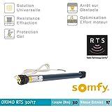 SOMFY - Moteur OXIMO RTS 30/17 - 230V/50Hz pour volets roulants Somfy - 1045319