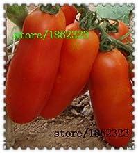 Nueva nueva llegada plantas al aire libre muy fácil mini jardín Semillas Sementes racimos de plátanos de semillas de tomate 100 semillas de vegetales orgánicos