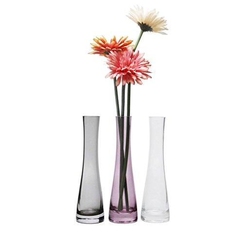Rachel\'s Choice 21.5cm Höhe Schmale Glas Vase Rattan Design Dekoglas klein Blumenvas, 3 Farben Set