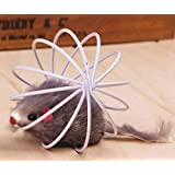 Pets Empire Toys For Pet Cat- Funny Rat In A Cage- Kitten Favourite Teaser Interactive Toy-1 Piece Color May Vary
