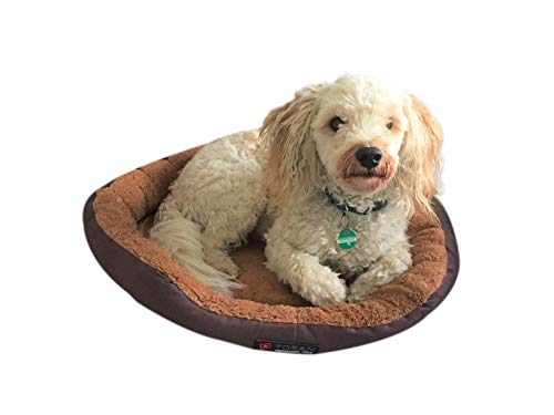 Lia Hundebett/Katzenbett Größe S 40cm Durchmesser mit Wendekissen braun/beige mit Polster waschbar, Fleece Oxfordgewebe super komfortabel und robust Hundekissen abwischbar