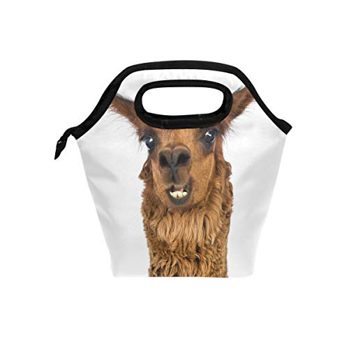 SKYDA Insulated Lunchpaket Close-Up of Alpaca Smiling Lunch Tote Reusable Cooler Bag Organizer Portable Reusable Lunch Tote -